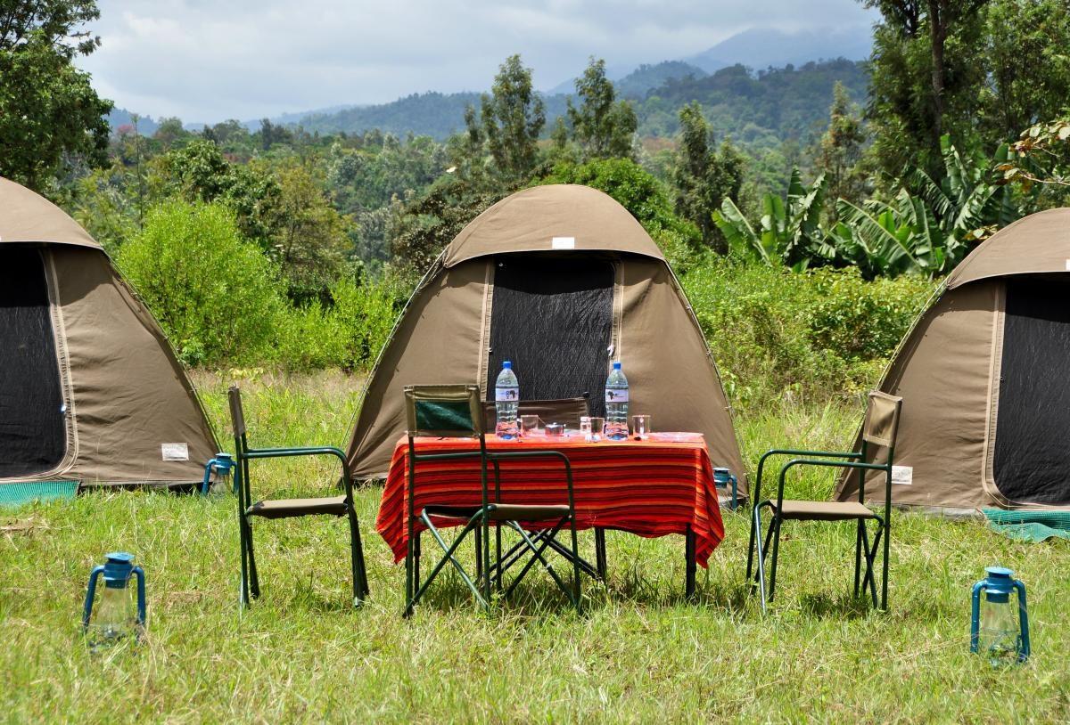 Safari in Tanzania cost