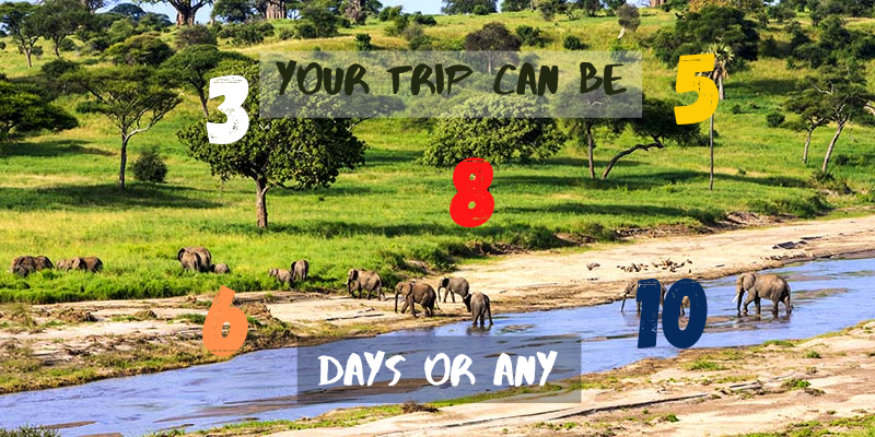 Number of days in Tanzania